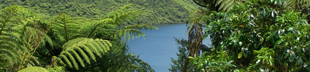 Blue Lake - Rotorua (New Zealand)