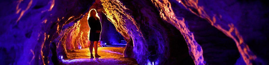 Waitomo Caves Glowworm Extravaganza