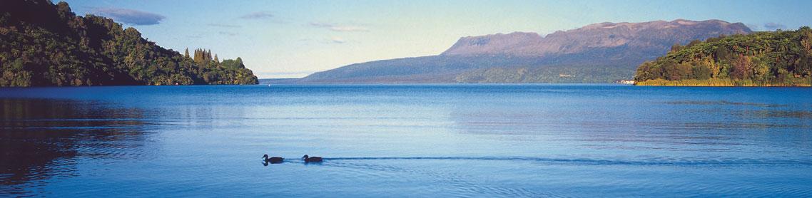 Rotorua Experience and Champagne Cruise Lake Tarawera