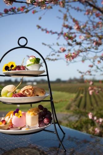 zealong-tea-garden-1